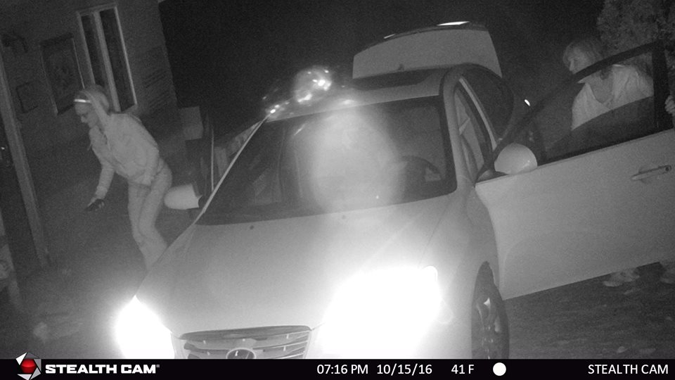 suspected-cahs-thieves
